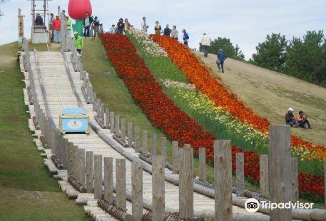 Yamaguchi Kirara Expo Memorial Park
