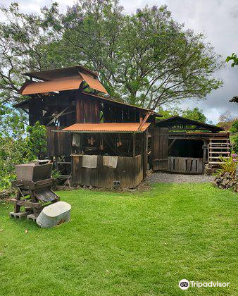 Kona Historical Society4