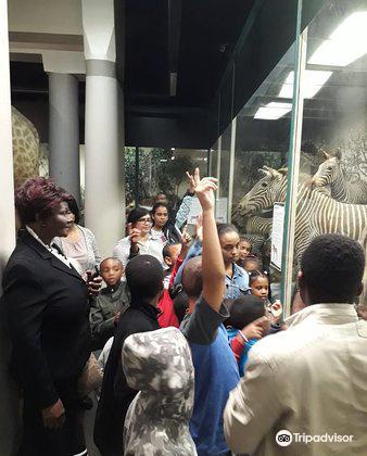 Natal Museum2
