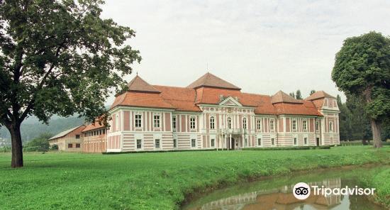 Betnava Mansion (Betnavski Dvorec)3