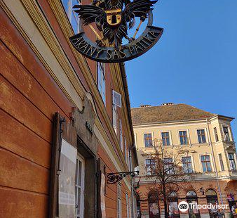 Golden Eagle Pharmacy Muesum