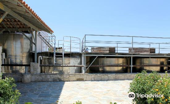 Kolios Winery3