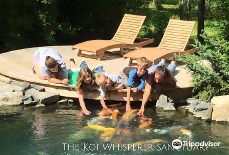 The Koi Whisperer Sanctuary & Japanese Gardens
