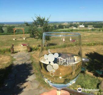 Tug Hill Vineyard