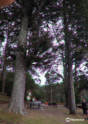 Wellington Park3