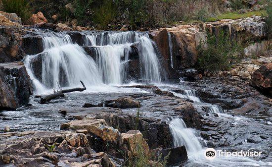 MacKenzie Falls1
