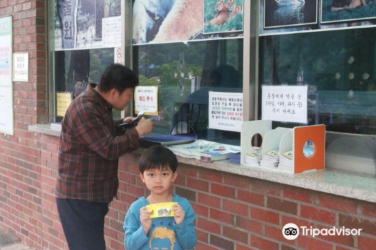 Cheongju Zoo 청주동물원4