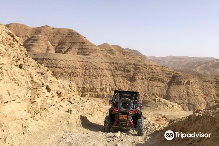 RZR Desert Excursions2