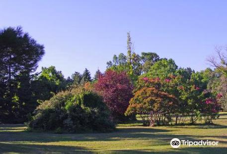 Botanical Garden Ecopark
