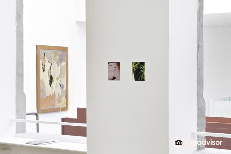 Fonds Regional d'Art Contemporain Auvergne (FRAC)3
