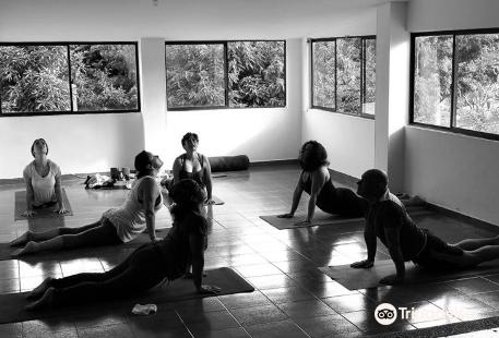 Kimara Yoga