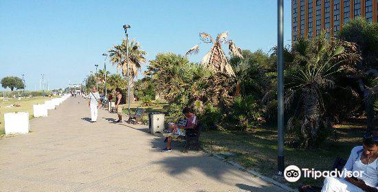 帕尼與波莫多羅海灘1