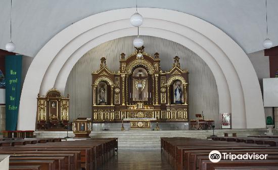 San Pedro Cathedral2