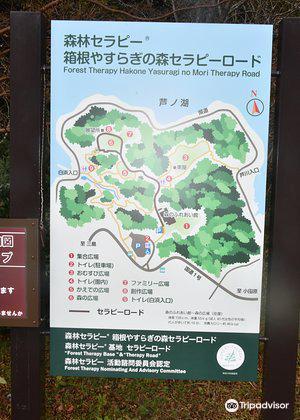 森のふれあい館4