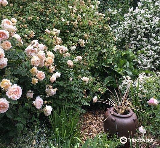 Rosedown Gardens3