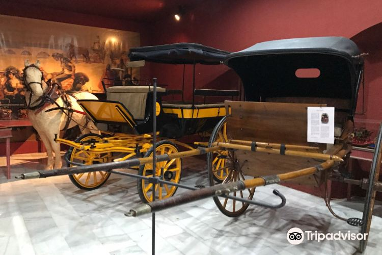 Carriage Museum (Museo de Carruajes)2