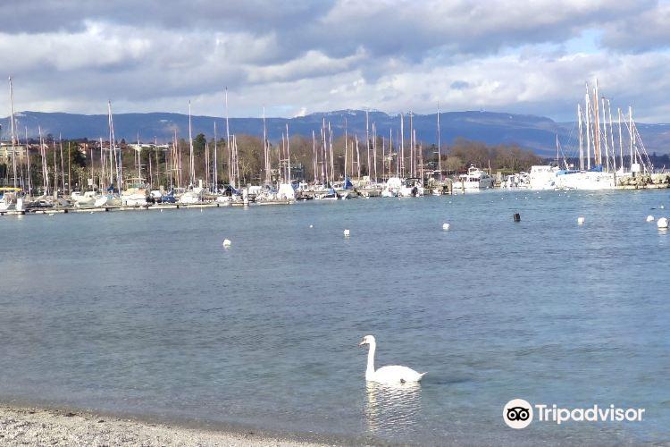 Lake Geneva Museum3