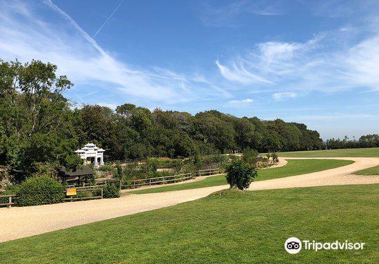 Robin Hill Adventure Park2