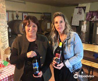 Winery Fattoria Cantagallo