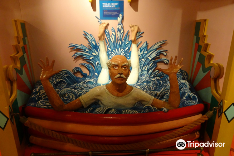 Guinness World Records Museum4