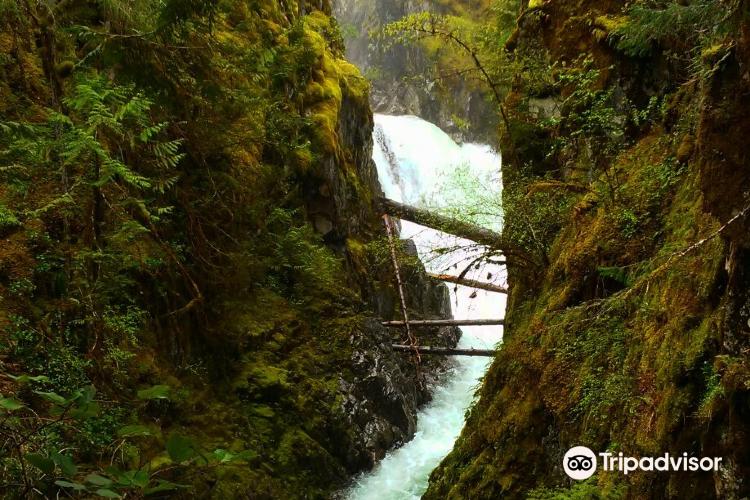 Little Qualicum Falls Provincial Park1