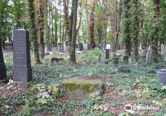 Prenzlauer Berg猶太公墓3