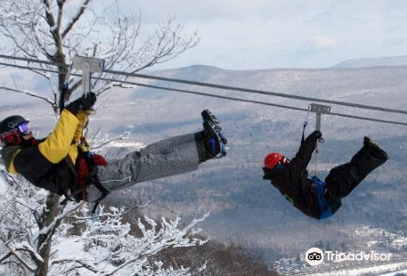 New York Zipline Adventures LLC