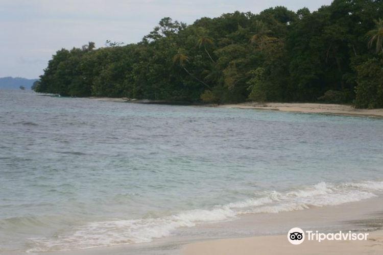Isla Bastimentos National Marine Park3