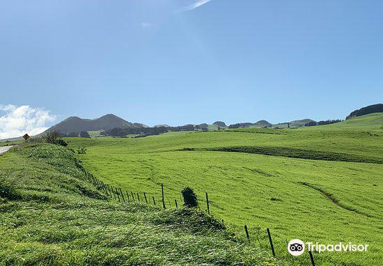 Kohola Mountain Road3
