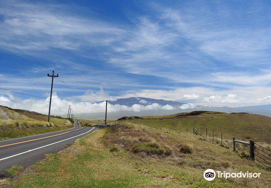Kohola Mountain Road2