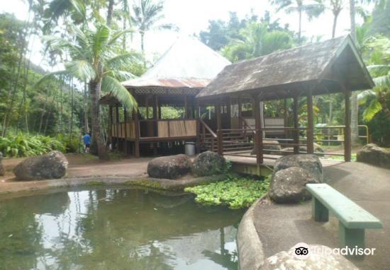 Hawaii Nature Center3