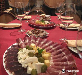 Wine tasting - Winery Masanovic