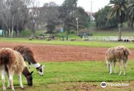 Parque Pedro de Valdivia