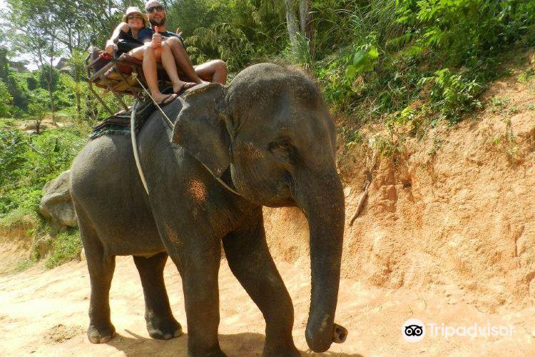 KokChang Safari Elephant Trekking3