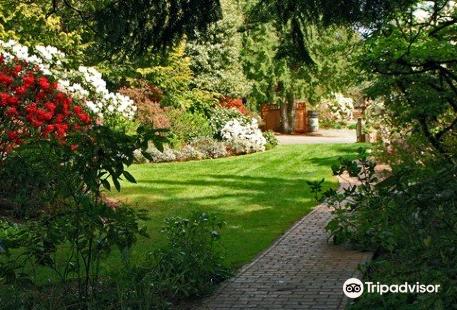 Soos Creek Botanical Garden