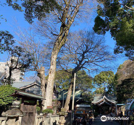 Hioki Shrine2