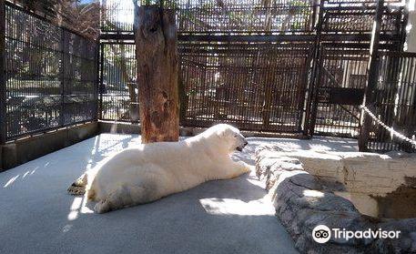 에히메 도베 동물원