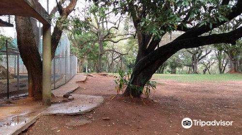 Botanical Garden and Zoo (Jardin Botanico y Zoologico)