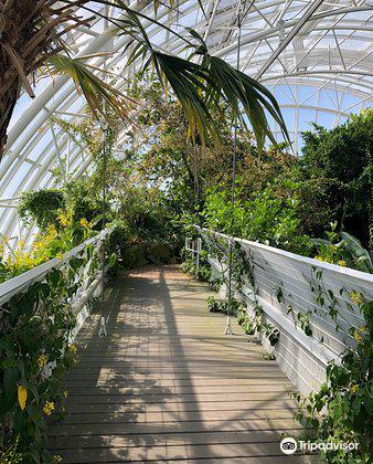 Myriad Botanical Gardens1