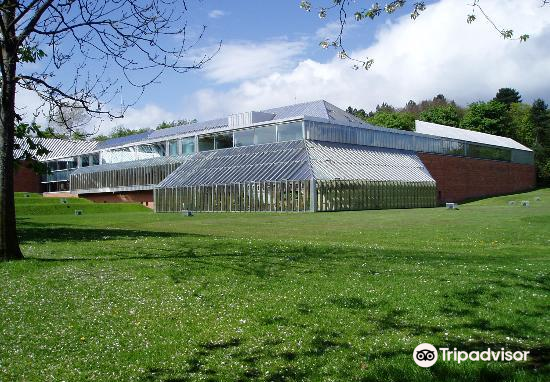 Burrell Collection3