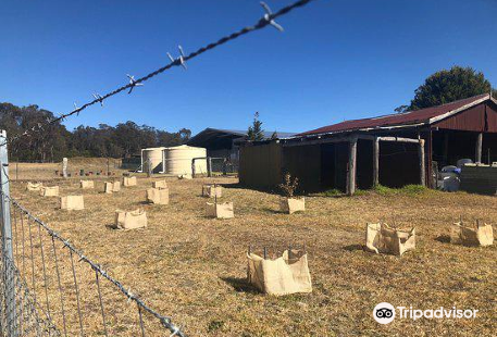 Truffle Discovery Centre Stanthorpe