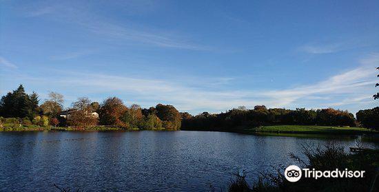 Dungannon Park2