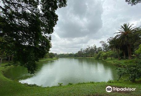 伊比拉布維拉公園Ibirapuera Park