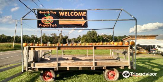 Meadeville Farm Pumpkin Patch