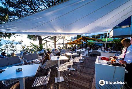 Purple Fish Lounge Bar