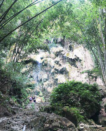 Tumalog Falls1