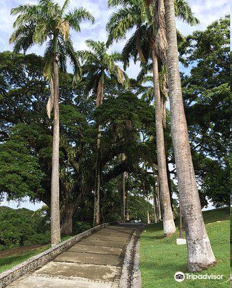 Tobago Historical Museum4
