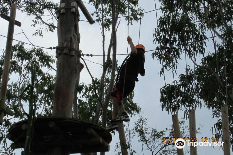 Treetop Adventure Park4