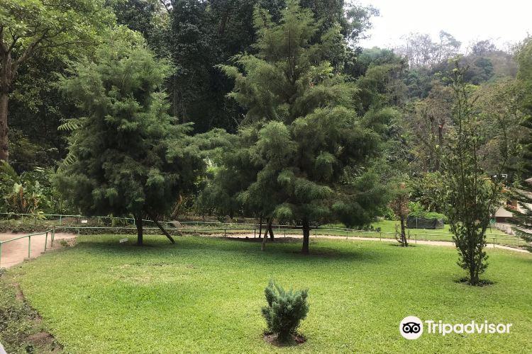 Jardin Botanico La Laguna1