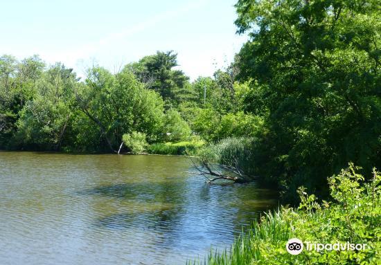 Nature Center at Shaker Lakes2